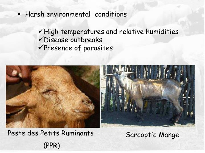 Harsh environmental  conditions