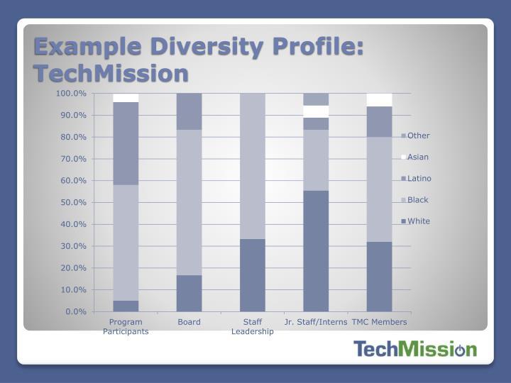 Example Diversity Profile: TechMission