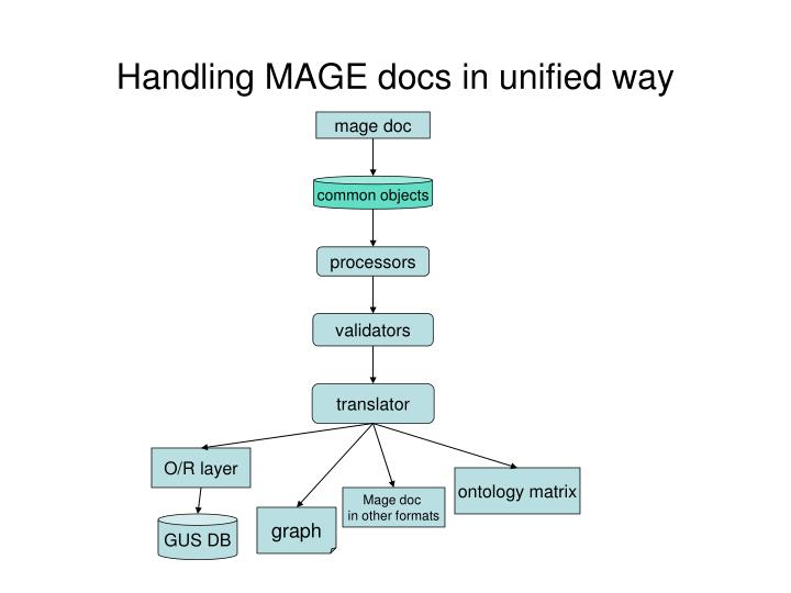 Handling MAGE docs in unified way