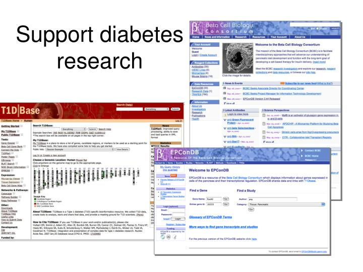 Support diabetes research