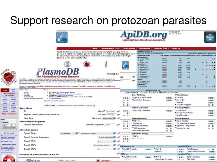 Support research on protozoan parasites