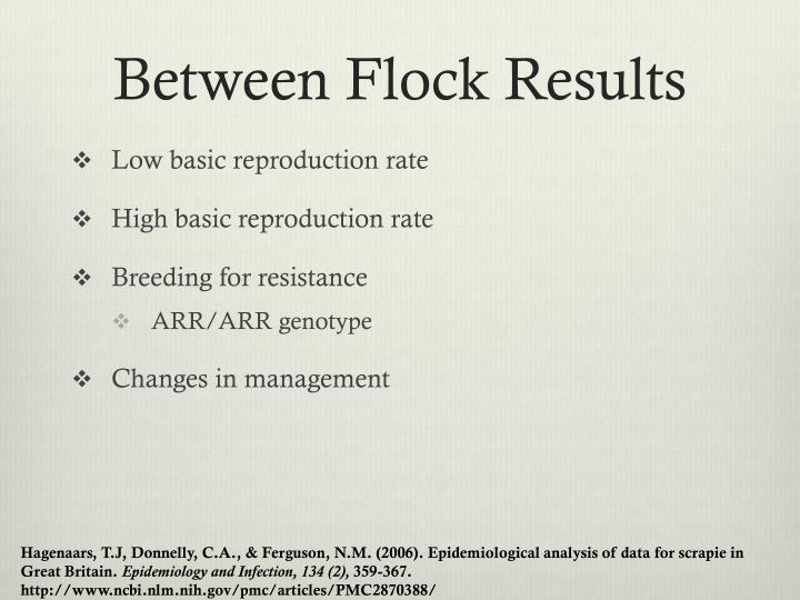 Between Flock Results