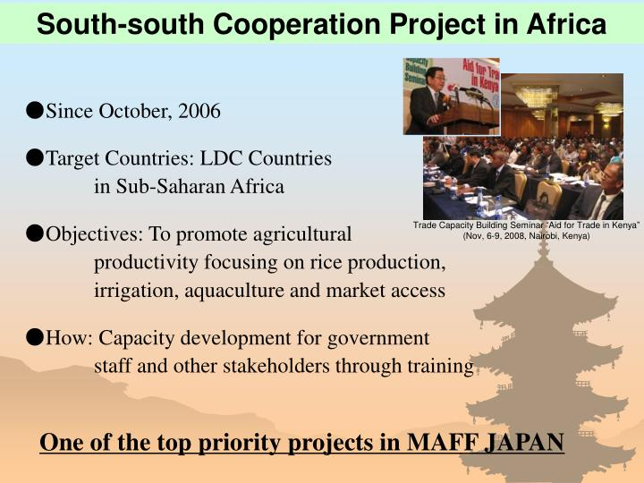 South-south Cooperation Project in Africa