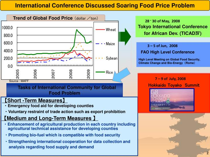 International Conference Discussed Soaring Food Price Problem