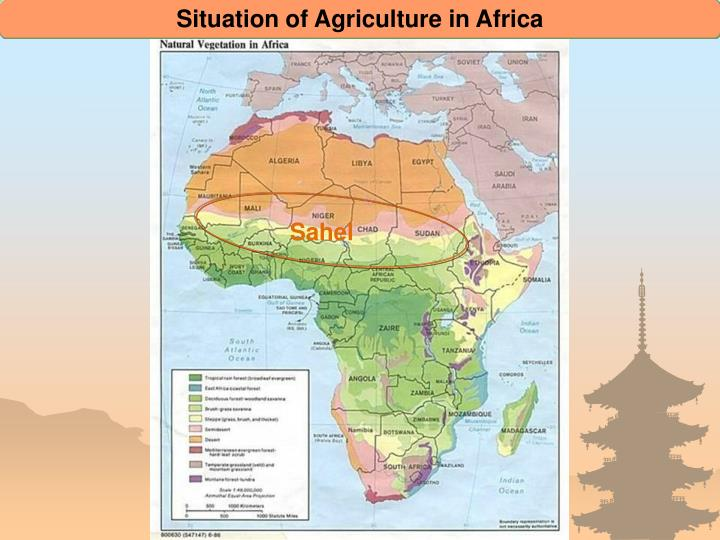 Situation of Agriculture in Africa
