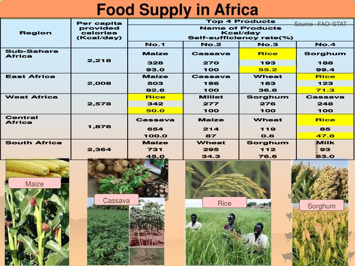 Food Supply in Africa