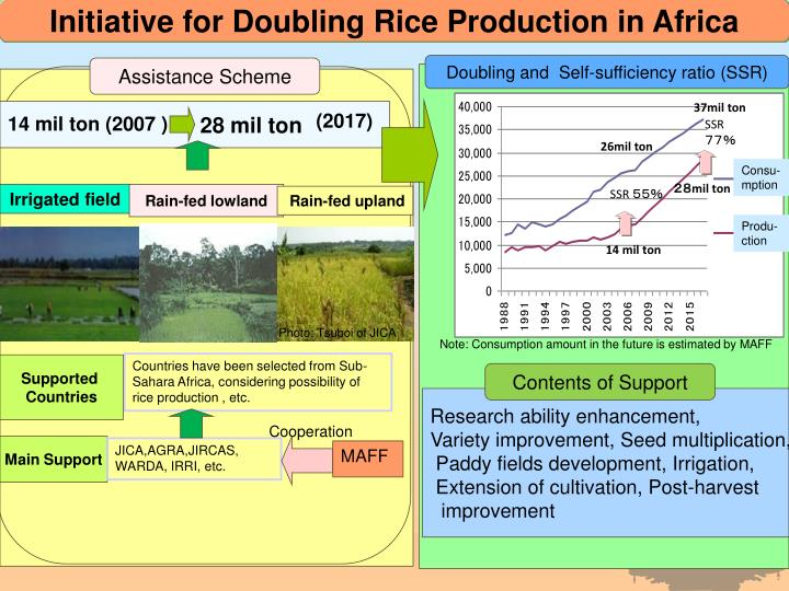 Initiative for Doubling Rice Production in Africa