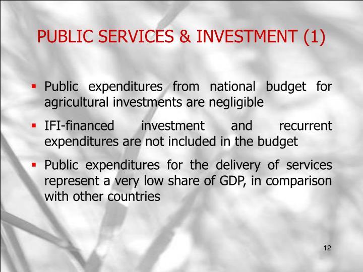 PUBLIC SERVICES & INVESTMENT (1)