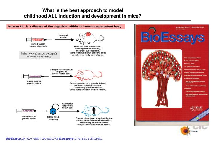 What is the best approach to model