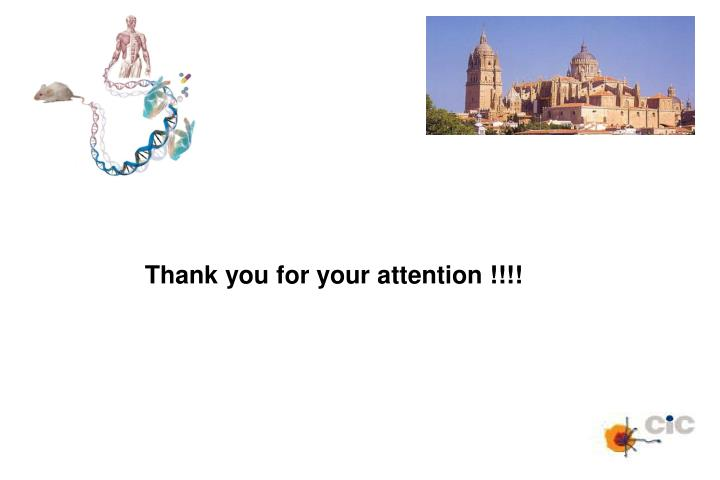 Thank you for your attention !!!!