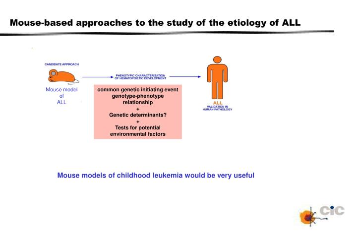 Mouse-based approaches to the study of the etiology of ALL