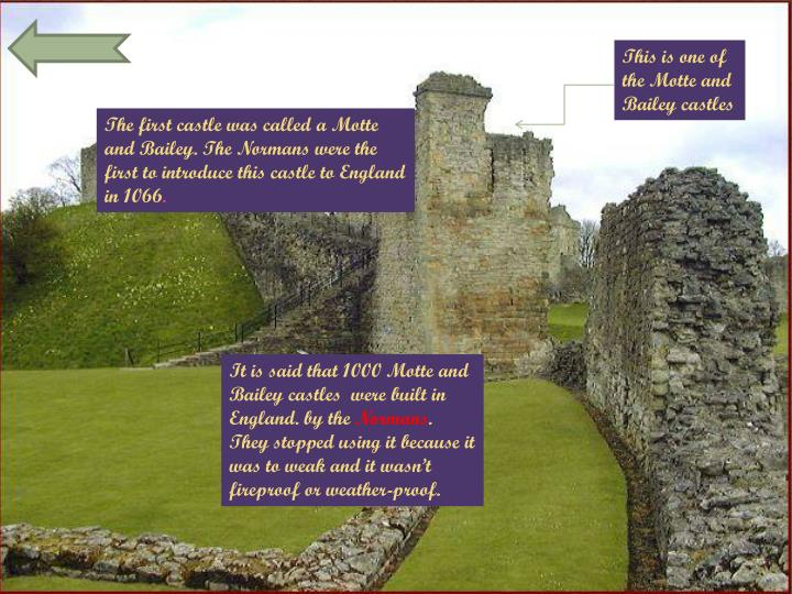 This is one of the Motte and