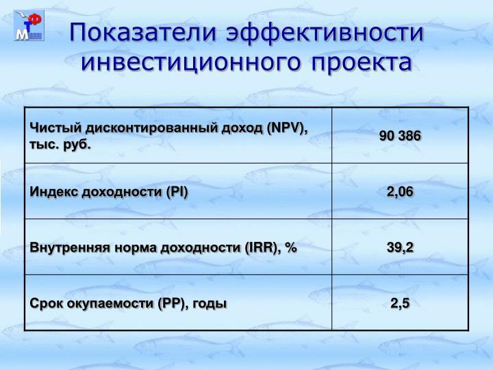 Показатели эффективности инвестиционного проекта