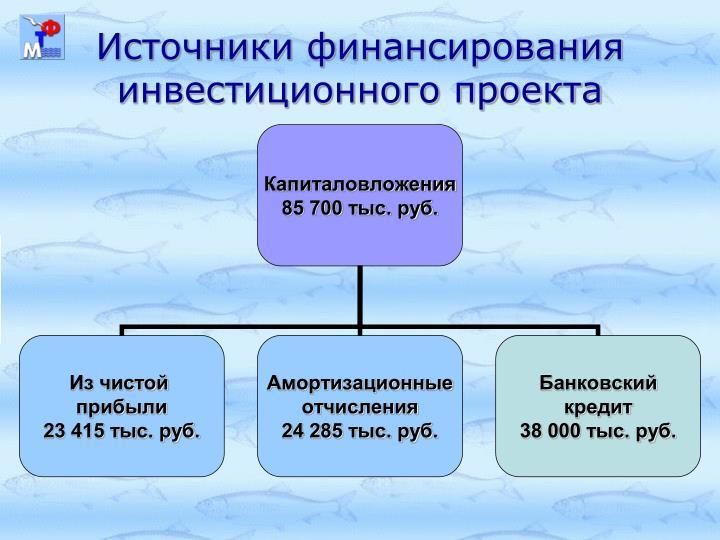 Источники финансирования инвестиционного проекта