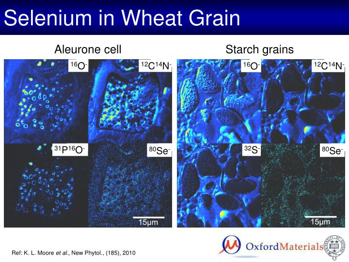 Selenium in Wheat Grain