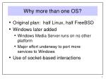 why more than one os