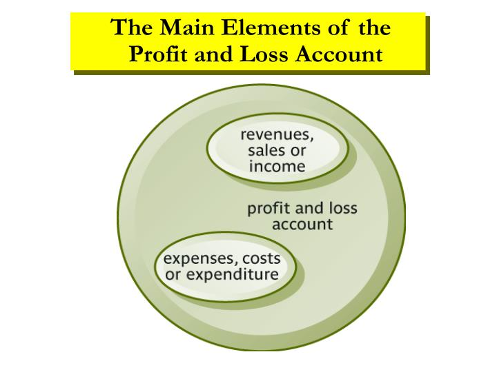 The Main Elements of the Profit and Loss Account