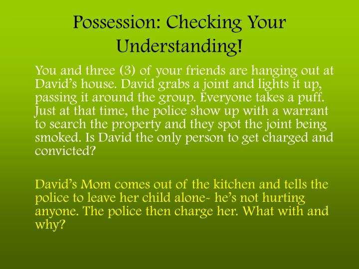 Possession: Checking Your Understanding!
