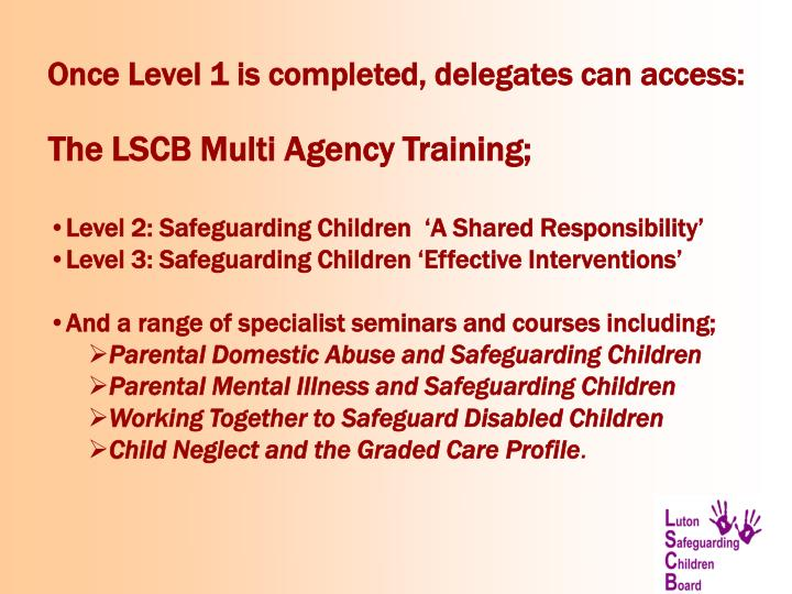 Once Level 1 is completed, delegates can access: