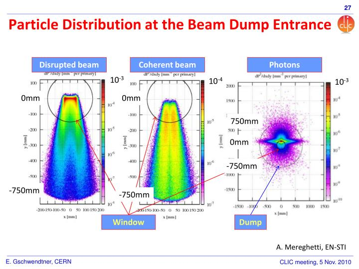 Particle Distribution at the Beam Dump Entrance