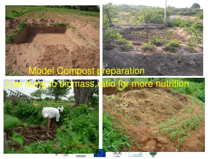 Model Compost preparation