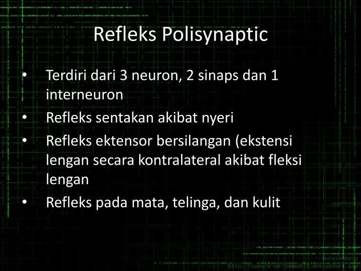 Refleks Polisynaptic