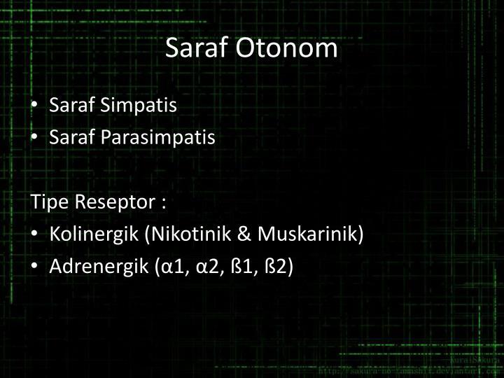 Saraf Otonom