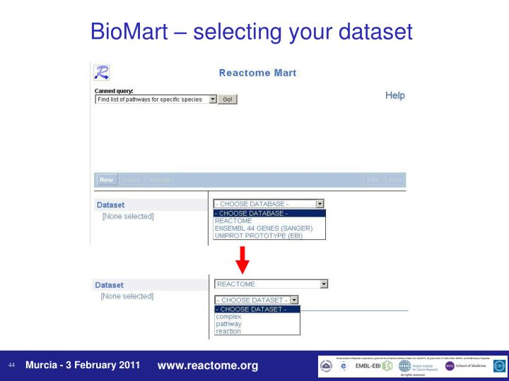 BioMart – selecting your dataset