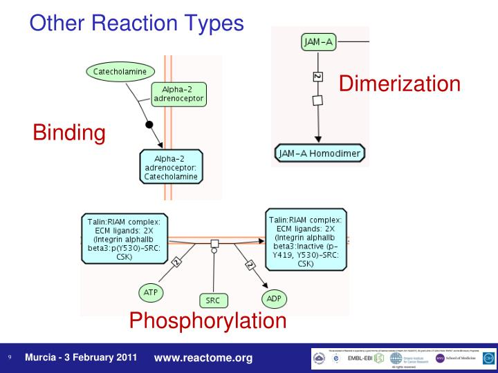 Other Reaction Types