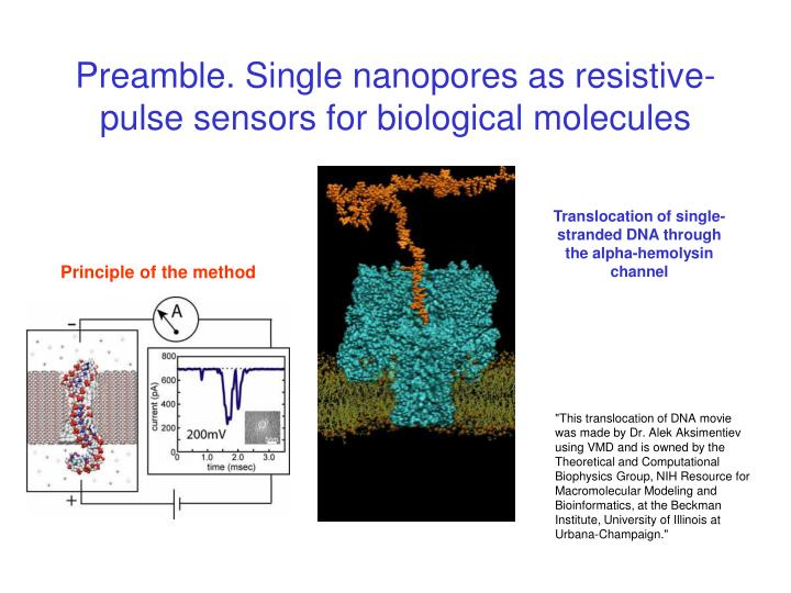 Preamble. Single nanopores as resistive-pulse sensors for biological molecules