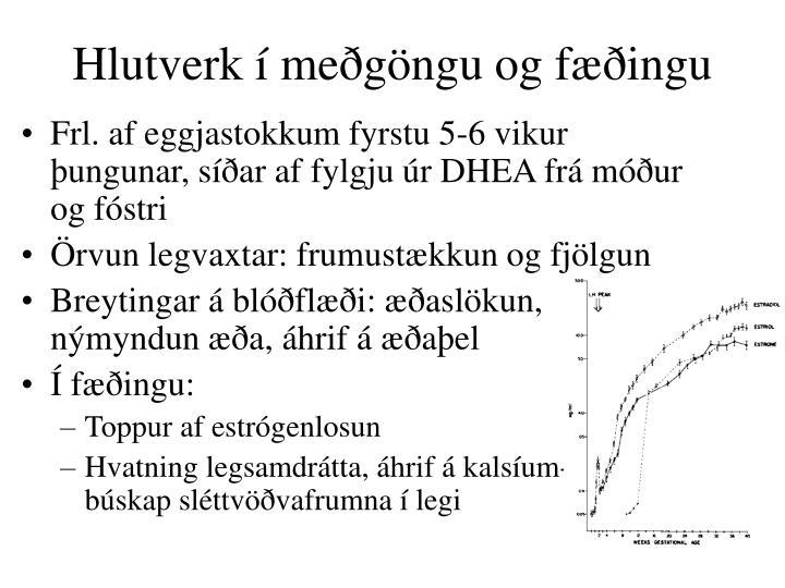 Hlutverk í meðgöngu og fæðingu