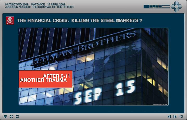 THE FINANCIAL CRISIS:  KILLING THE STEEL MARKETS ?