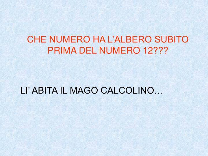 CHE NUMERO HA L'ALBERO SUBITO PRIMA DEL NUMERO 12???