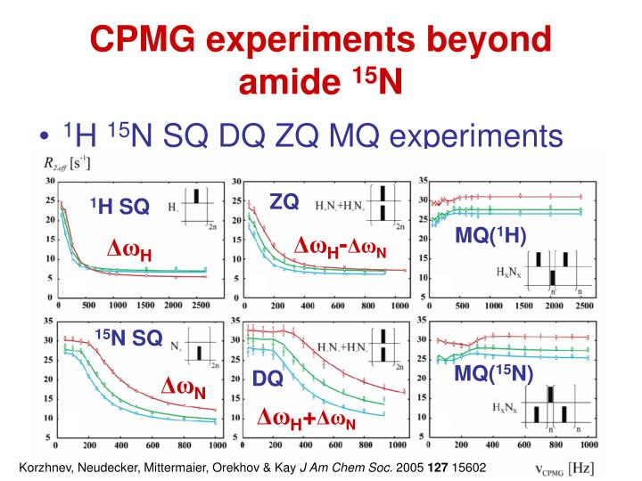 CPMG experiments beyond amide