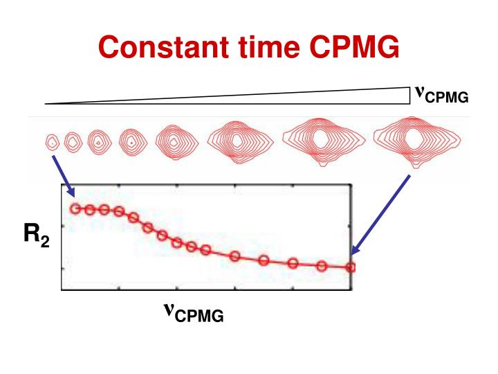 Constant time CPMG