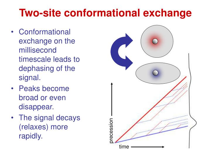 Two-site conformational exchange