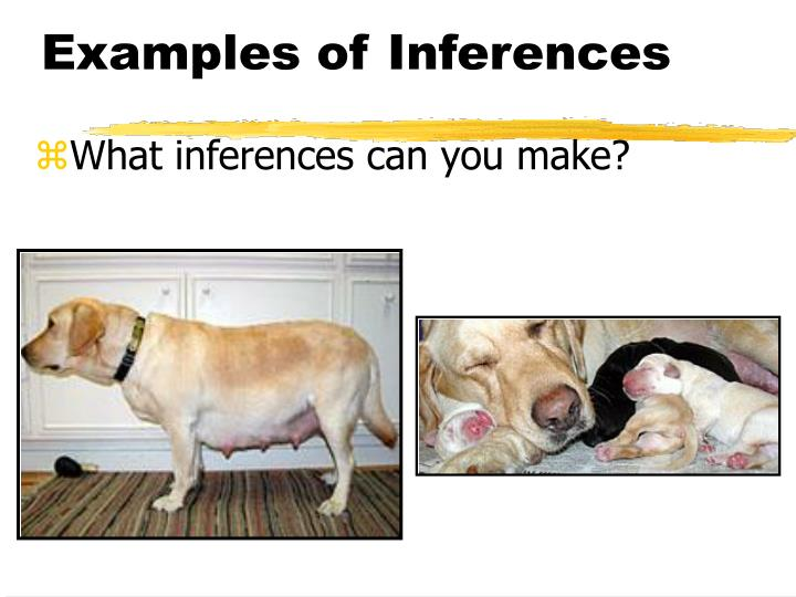 Examples of Inferences