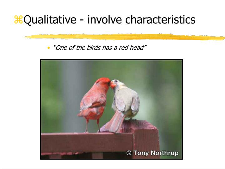 Qualitative - involve characteristics