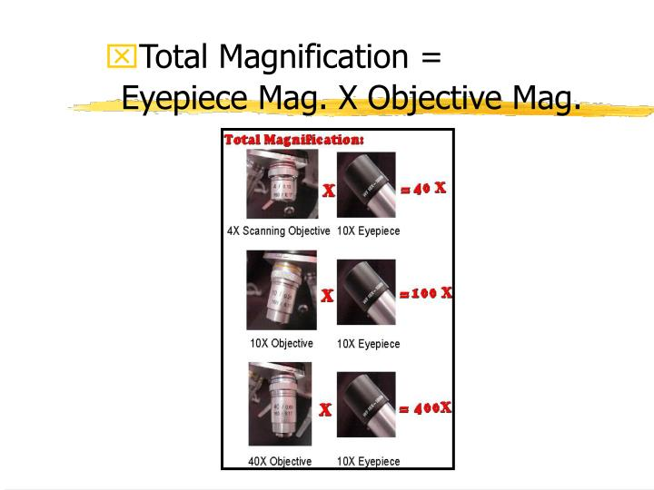 Total Magnification =