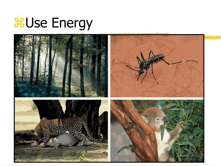 Use Energy