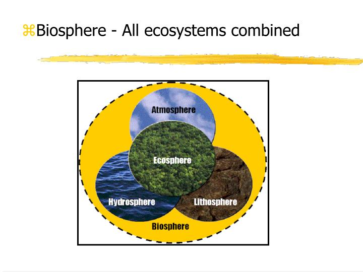 Biosphere - All ecosystems combined