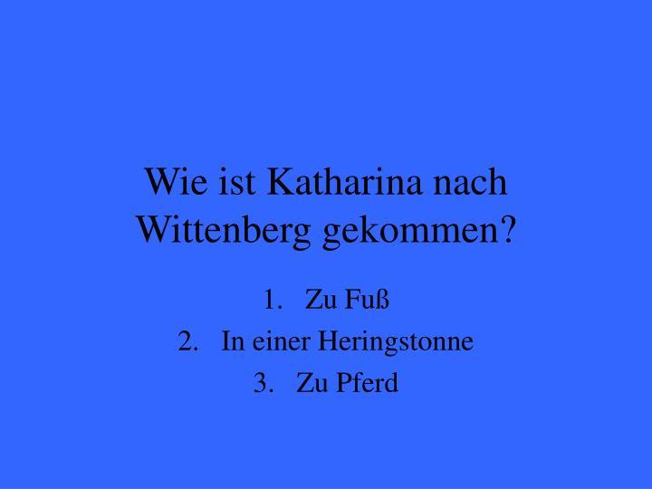 Wie ist Katharina nach Wittenberg gekommen?