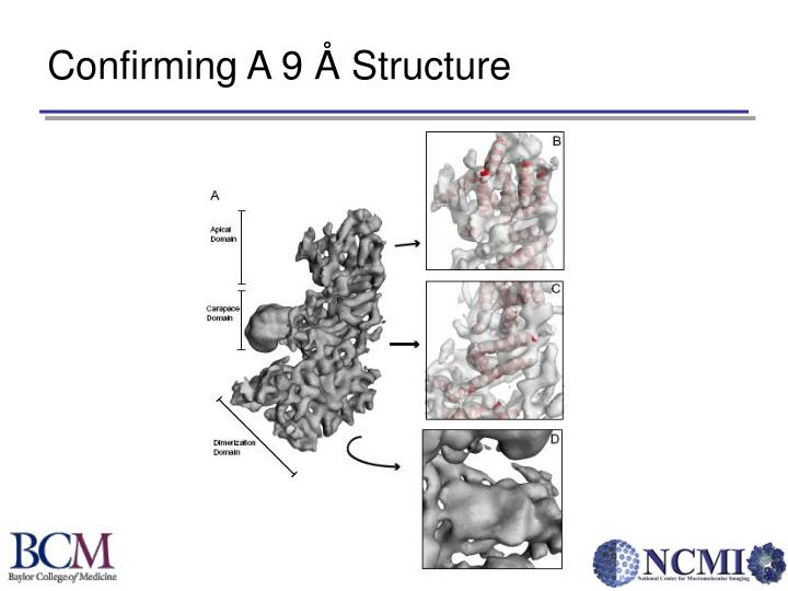 Confirming A 9 Å Structure