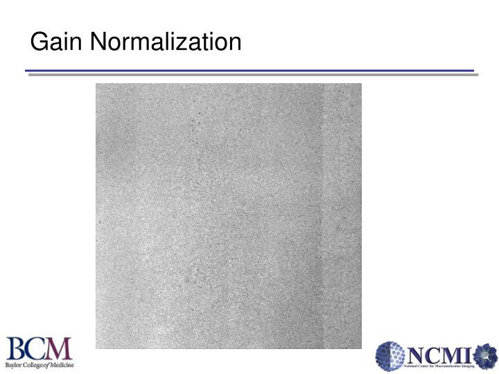 Gain Normalization
