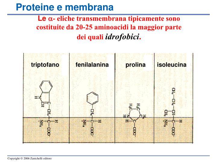 Proteine e membrana