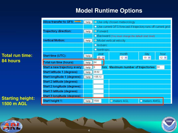 Model Runtime Options