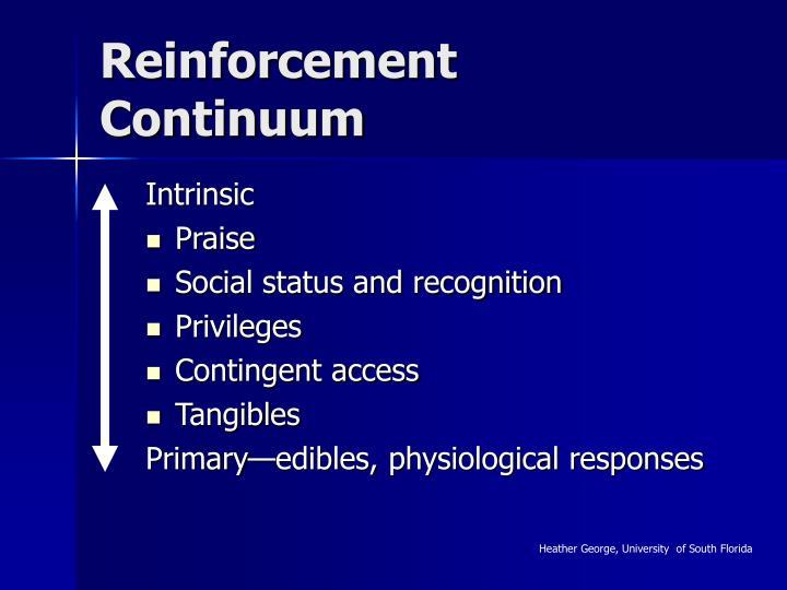 Reinforcement Continuum