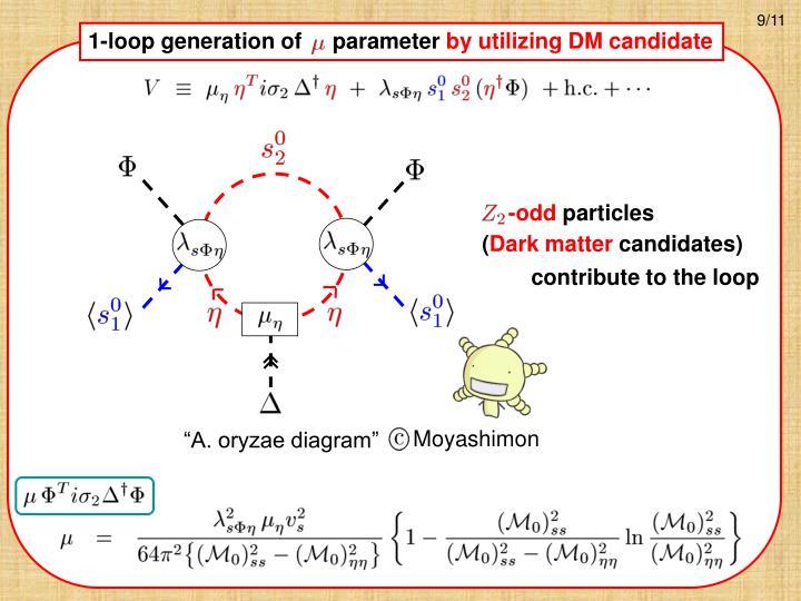 1-loop generation of     parameter