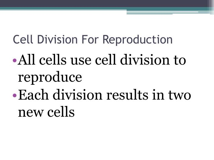 Cell Division For Reproduction