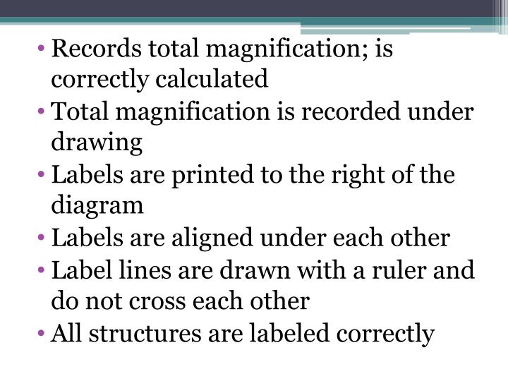 Records total magnification; is correctly calculated